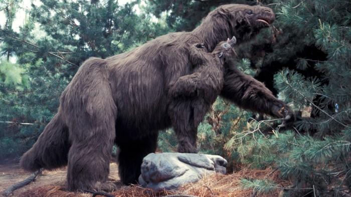 Artist impression of giant sloth.