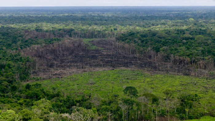 A wooded area with deforestation is seen in the Serrania del Chiribiquete, Colombia.