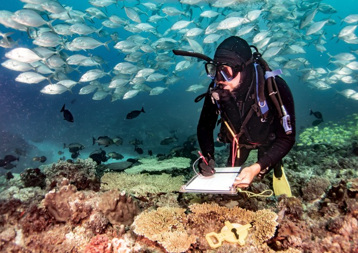 Graham Edgar in SCUBA gear is taking notes near the sea floor above coral and surrounded by fish