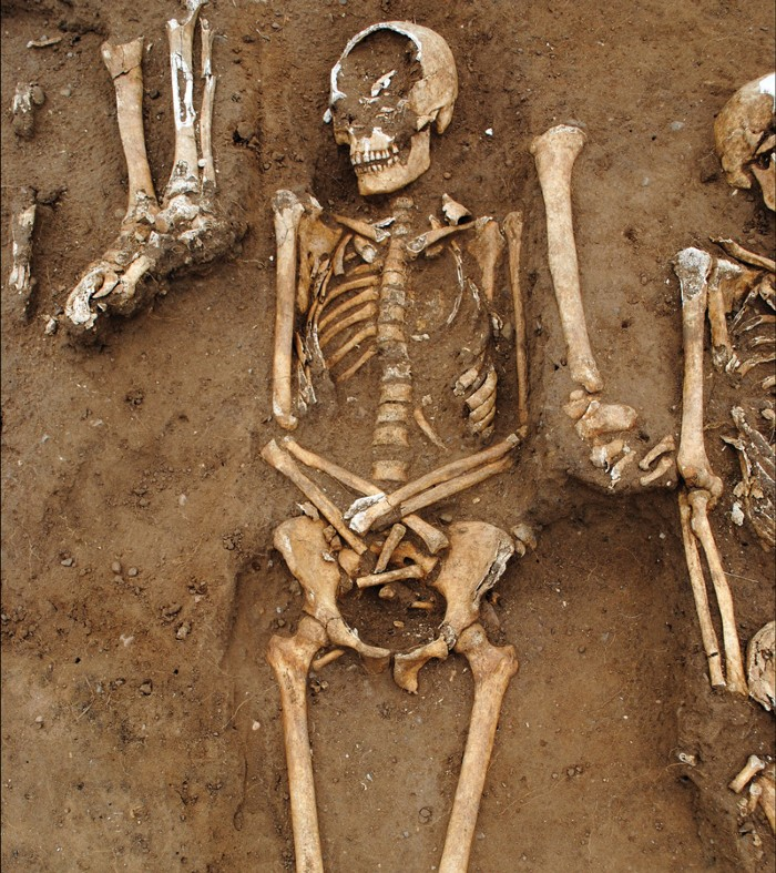 Detailed view showing how the rows of buried skeletons overlap.
