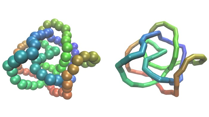 Two visual representations of the same circular polymer conformation in simulation.