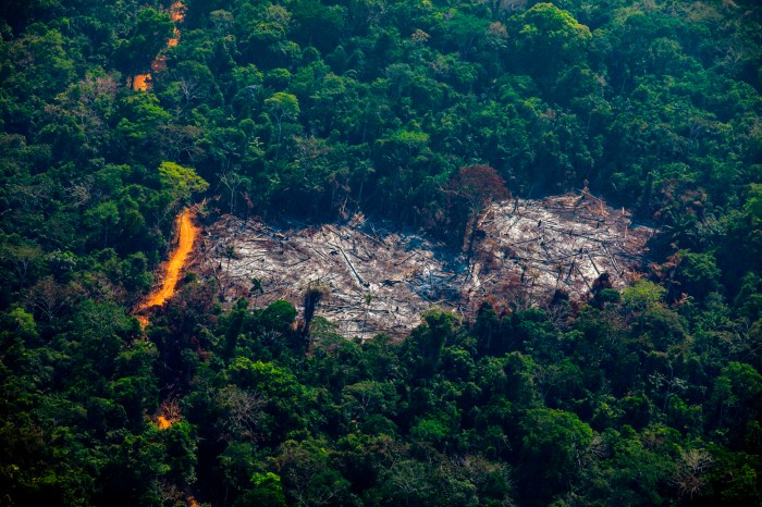 An aerial view of deforestation in the Amazon basin forest of Brazil.