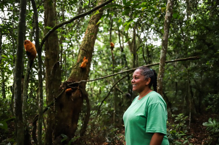 Andreia Martins stands among some trees in which sit a few golden lion tamarins