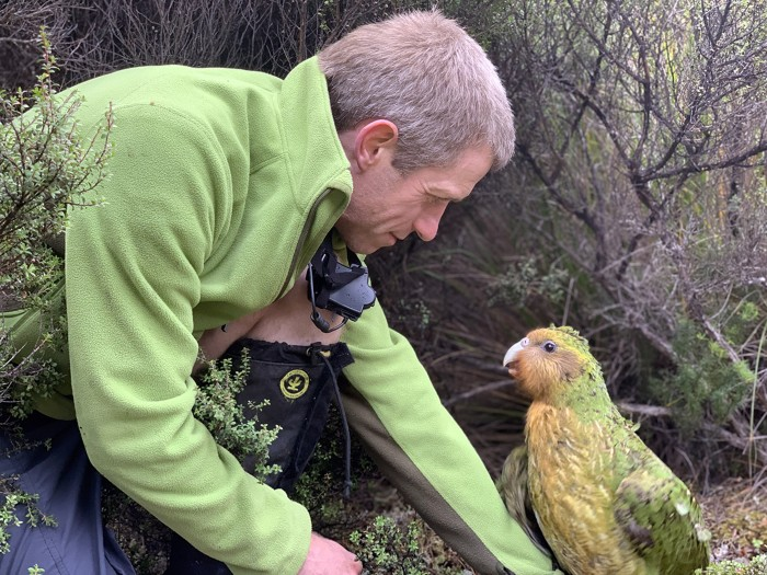 Andrew Digby crouches down next to a kakapo