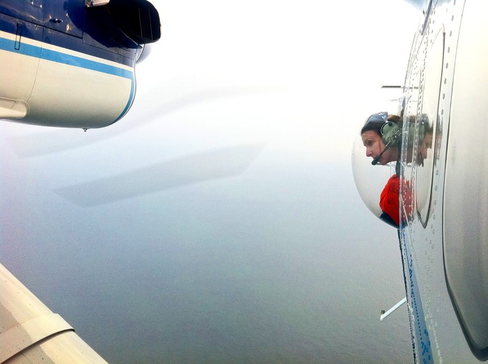 A researcher in an airplane looks for North Atlantic right whales