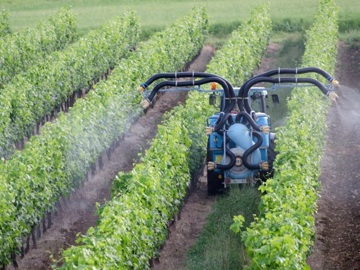 A blue machine travels between rows of plants, spraying them from four hoses.