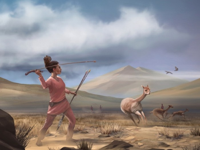 Artist reconstruction of Wilamaya Patjxa vicuña hunt.