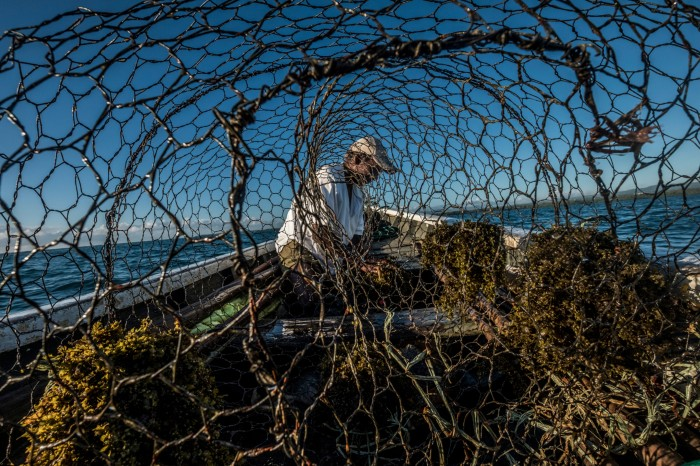 View through holes in netting of a fisherman on a small boat out at sea