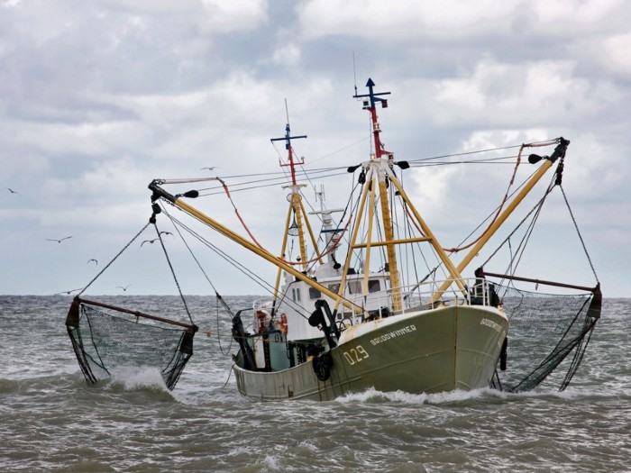 Fishing boat / Trawler on the North Sea dragging fishing nets, Ostend, Belgium.
