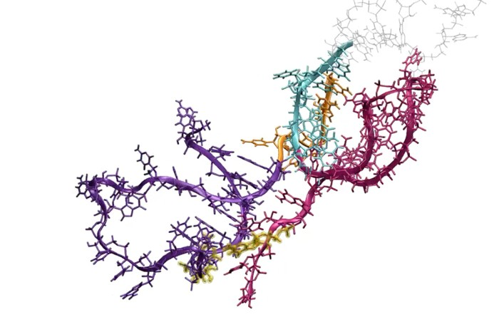 Tangle of coloured, wiggly lines with ring-like molecules sticking out in places.
