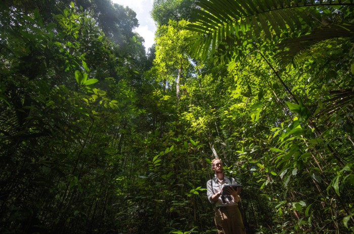 James Ball, PhD student at University of Cambridge does forest inventory in Guyana.