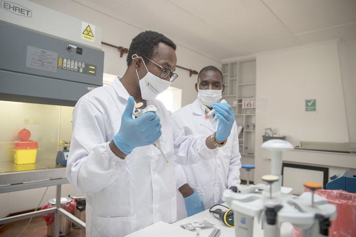 Brighton Samatanga, director and founder of the Biotech Institute Zimbabwe, working in his lab with a colleague in Harare