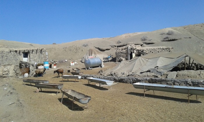 A local community in the Patargan sub-basin, eastern Iran