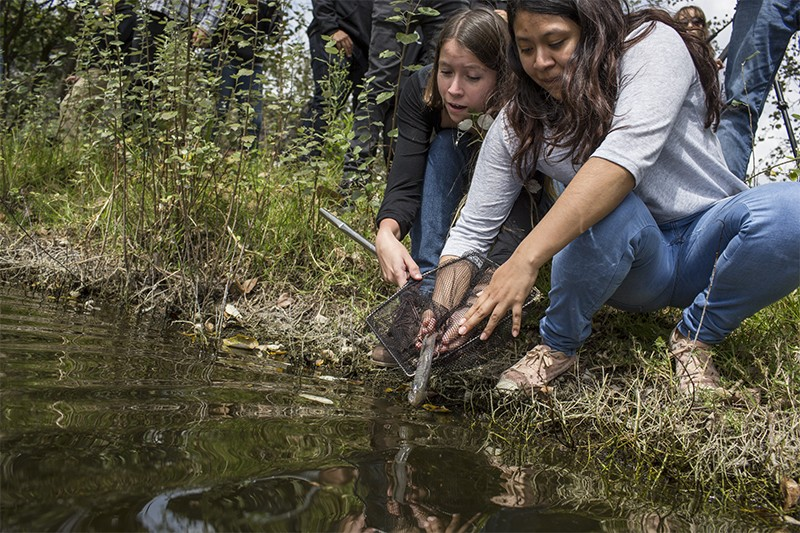 Students release axolotl under the supervision of Dr Luis Zambrano into a lake controlled by NAUM