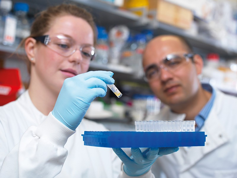 Two researchers in a lab examine a vial