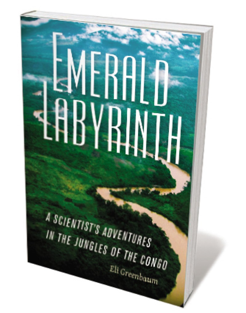 Book jacket 'Emerald Labyrinth