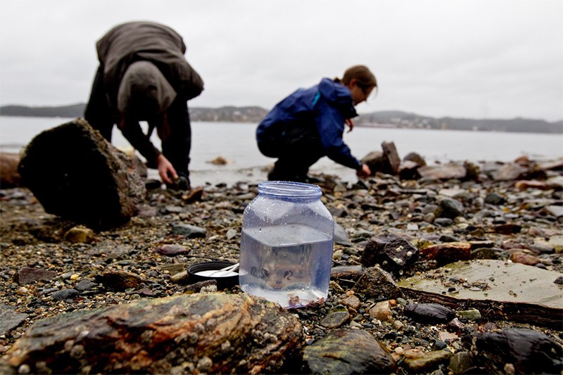 Researchers collect specimens in Norway.