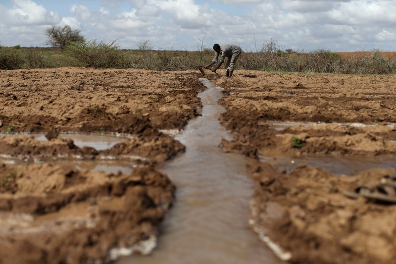 Picture of farmer in Somaliland