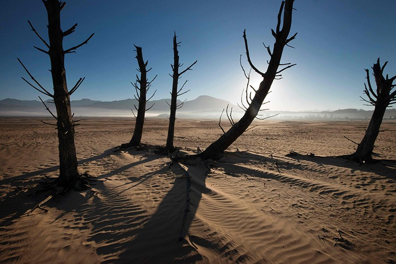 Cape Town heads for 'Day Zero' as water supplies dwindle