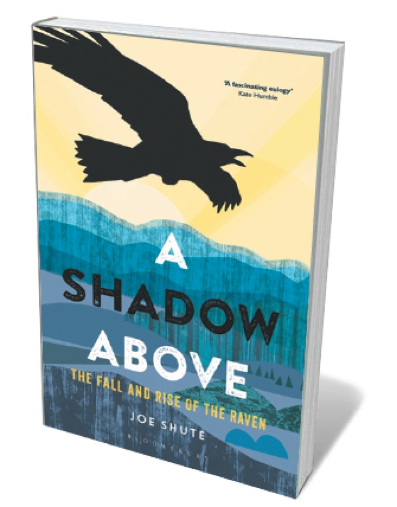 Book jacket - Shadow Above
