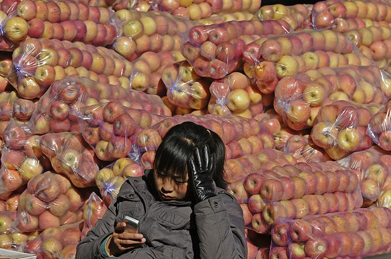 A girl selling apples looking at a smartphone