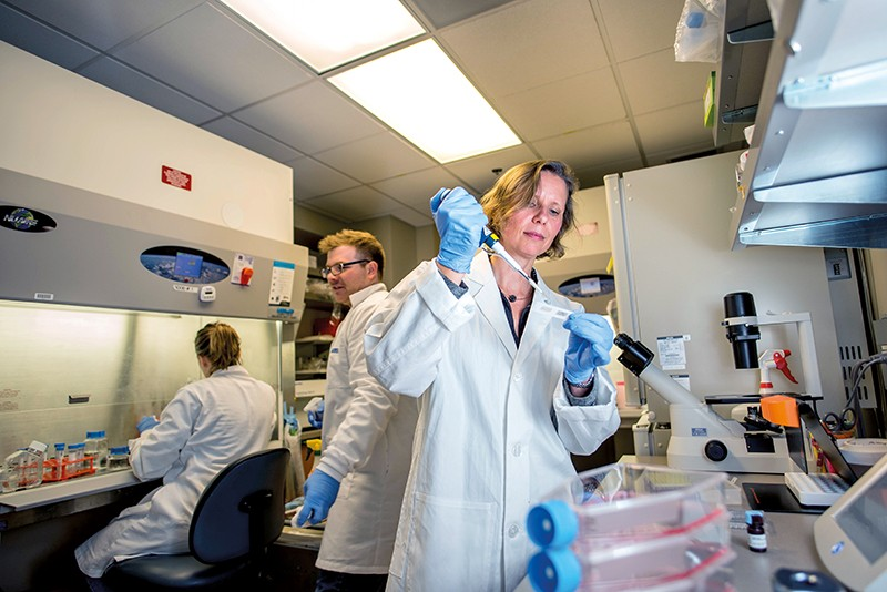 Megan Levings performs a cell-culture task in the lab with members of her research team.
