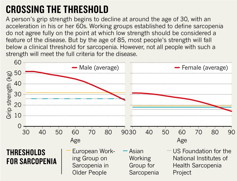 Infographic of grip strength thresholds for sarcopenia in men and women.