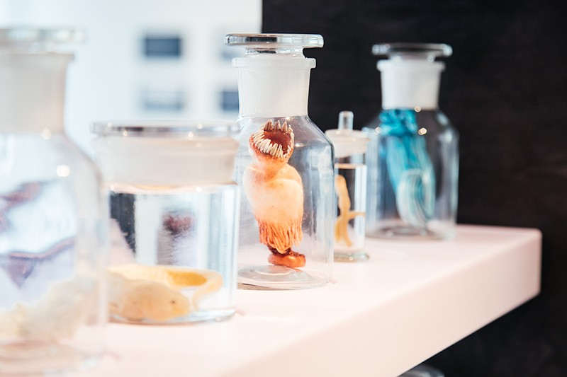 Series of real specimens and fictional artworks displayed in different sized jars.