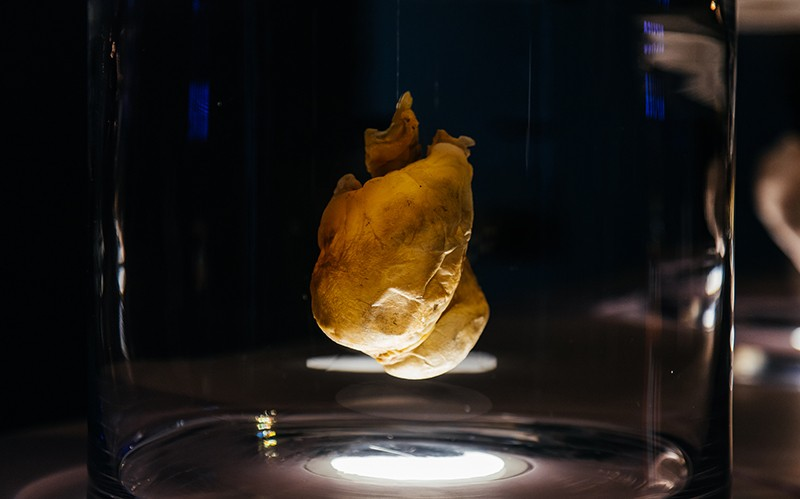 A white heart displayed in a jar in a dark room.