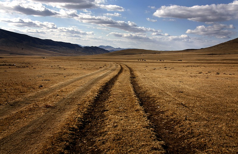 Grasslands in Mongolia