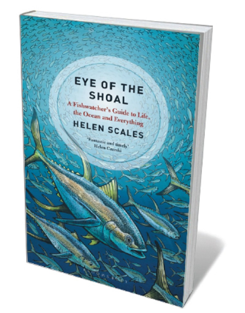 Where colour comes from the secret lives of fish and growth in book jacket eye of the shoal malvernweather Images