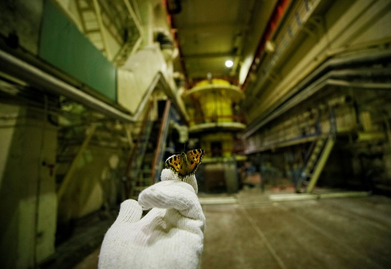 A visitor holds a butterfly that was found in a pump room of the stopped third reactor at the Chernobyl nuclear power plant.