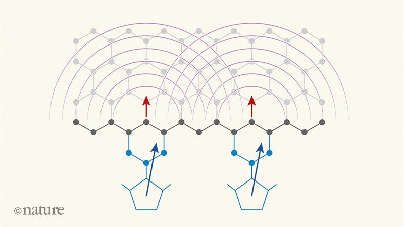 Spinning on the edge of graphene