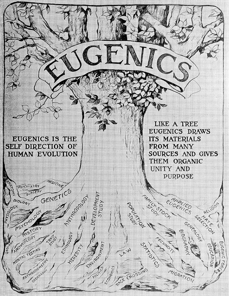 Wall panel showing 'The Relation of Eugenics to Other Sciences' as an illustrative tree. From the Int. Congress of Eugenics 1932