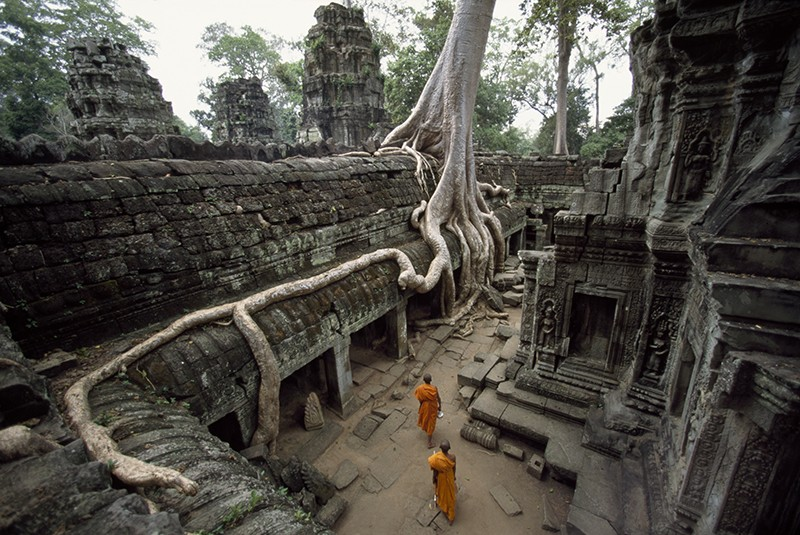 Buddhist monks near large strangler fig at the Ta Phrom Temple in Angkor Wat, Cambodia.