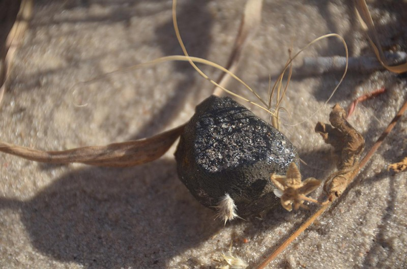 The small darkly coloured rectangular Botswana Meteorite on sandy ground.