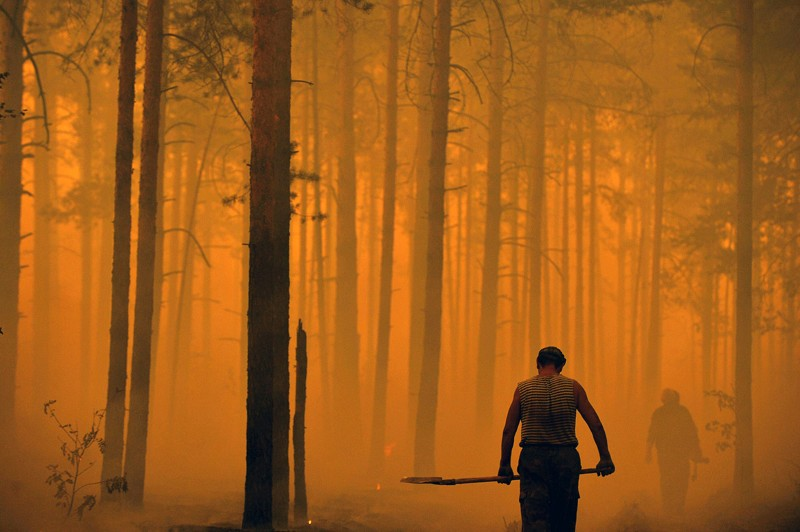 A man stands silhouetted against an orange lit forest in Russia