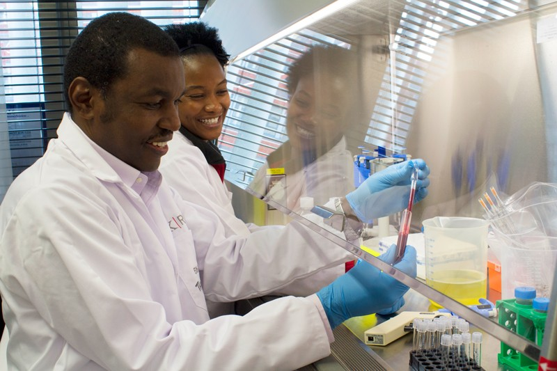 how working as a research technician can bolster your scientific career