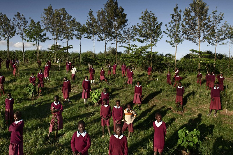 Schoolchildren plant trees in Mau Forest, Kenya,