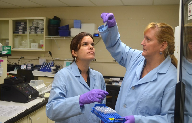Lucy Keith-Diagne and colleague inspect genetic sample in lab