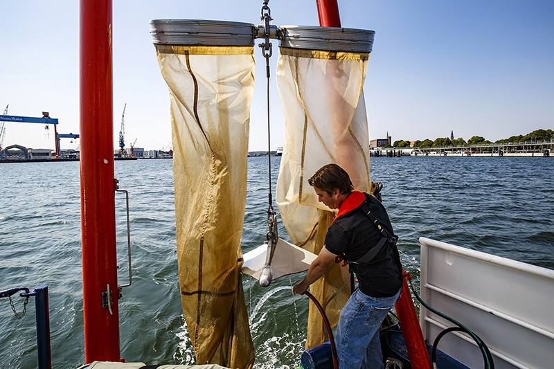 Biological assistant collects samples on board a research vessel