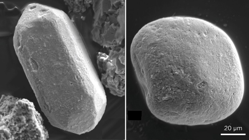 Scanning electron microscope images of Green Sandstone Bed zircons
