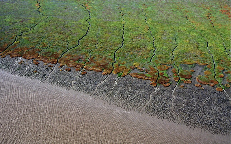 Aerial view above tidal wetlands and mud flats south San Francisco bay