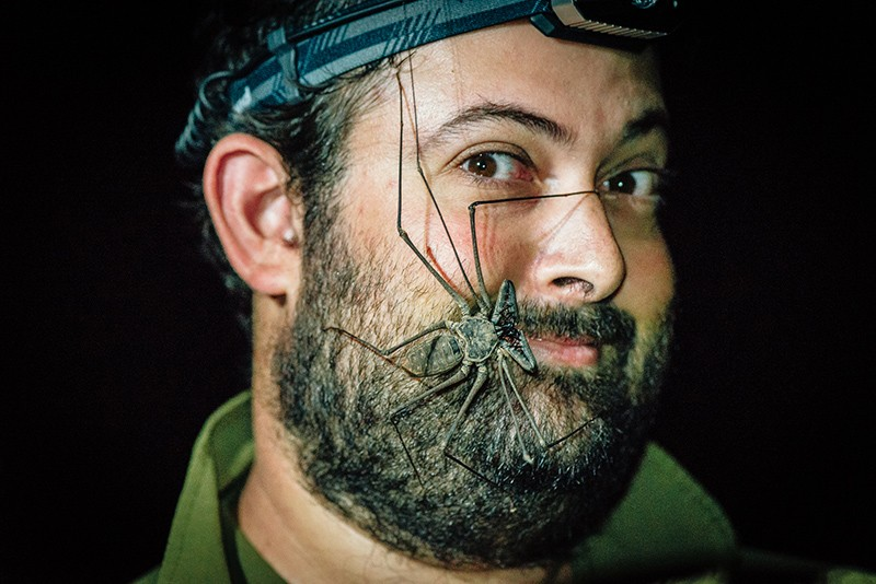 Jason Goldman with a Tail-less whip scorpion on his face