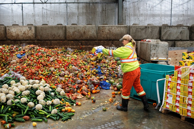 A worker dumps pre-consumer food waste