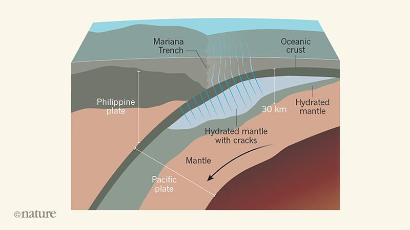 Water takes a deep dive into an oceanic tectonic plate