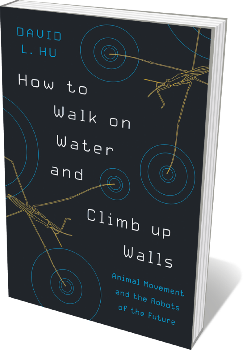 Book jacket 'How to Walk on Water'