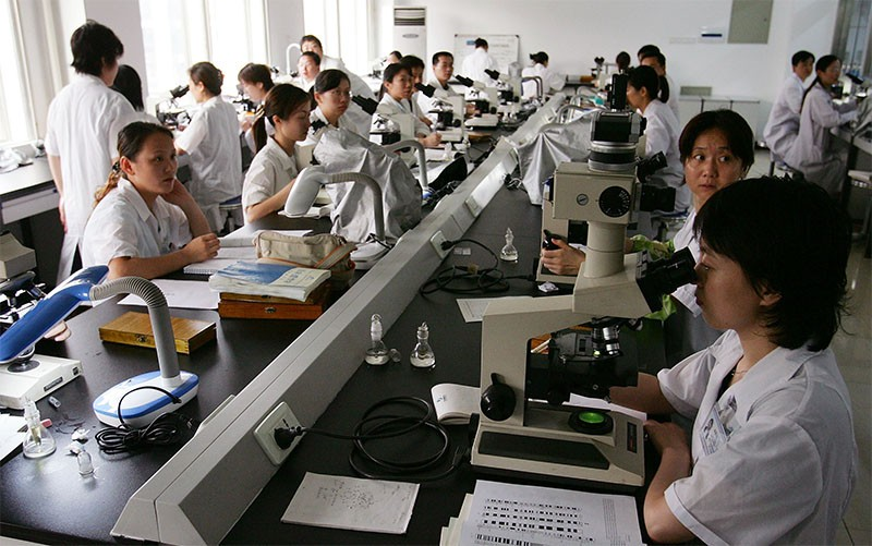 Chinese researchers sit at a bench working