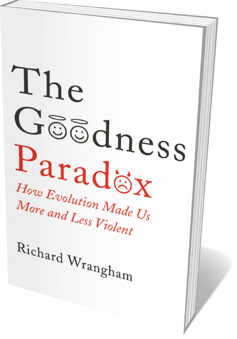 Book jacket 'The Goodness Paradox'