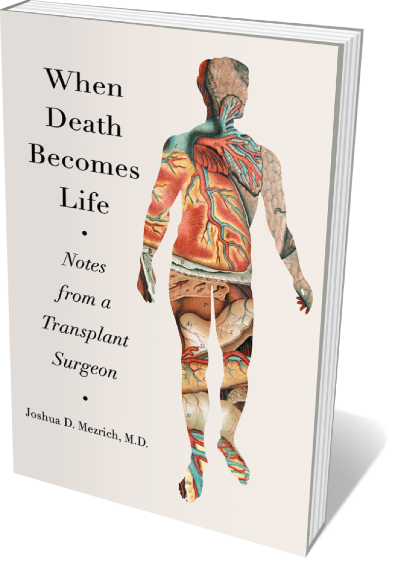 Book jacket 'When Death Becomes Life'